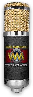 Voiceovers By Walt - Professional Voice Overs and Voice Over Talent based in Tampa Bay Florida
